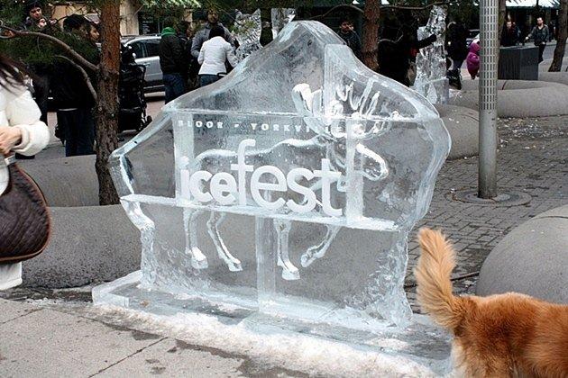 Bloor Yorkville Icefest